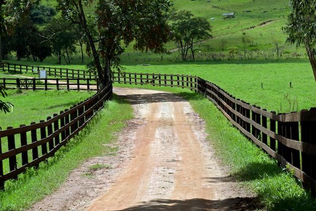 Chemin de terre flanqué d'une clôture en bois sombre, avec des arbres et de l'herbe. campagne brésilienne