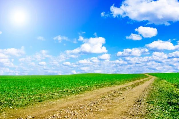 Chemin de terre avec un jour nuageux