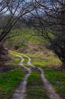 Chemin de terre non goudronné dans le paysage de printemps de campagne un jour nuageux