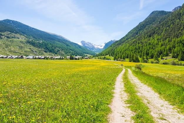 Chemin de terre poussiéreux traversant des prés fleuris, dans un paysage alpin pittoresque et un ciel morose.