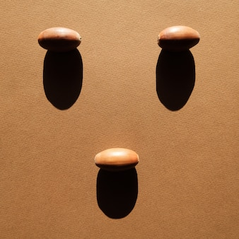 Chêne acorns brown paper background cast deep shadow.