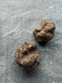 Cher champignon truffe noire rare sur gris