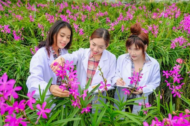 Chercheur en robe blanche et explorez le jardin d'orchidées pour la recherche et le développement de nouvelles espèces d'orchidées