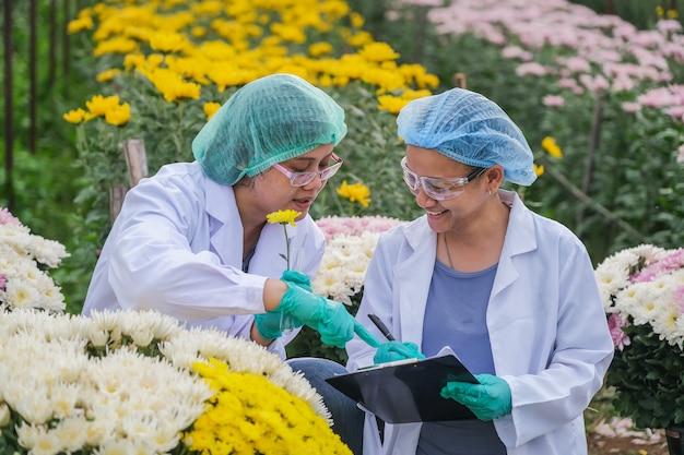 Chercheuses asiatiques et enregistrement de données sur le chrysanthème dans le jardin