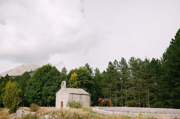 Un cheval brun près d'une petite église dans les montagnes près de la forêt
