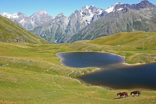 Le cheval marchant sur l'herbe près du lac avec des montagnes en arrière-plan