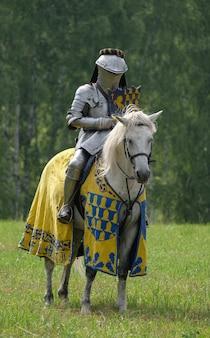 Chevalier médiéval en armure métallique sur un cheval dans un champ