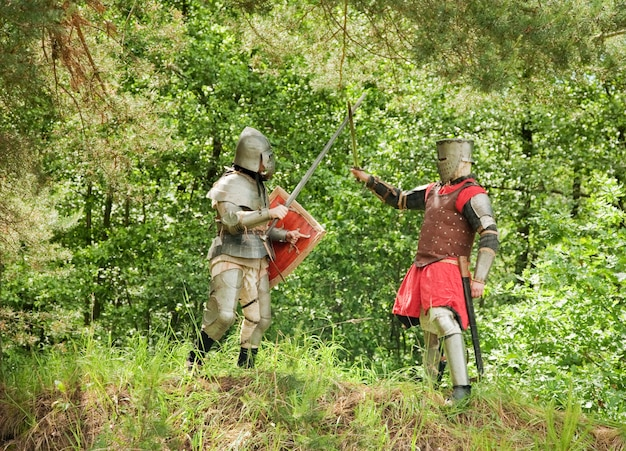 Chevaliers combattants