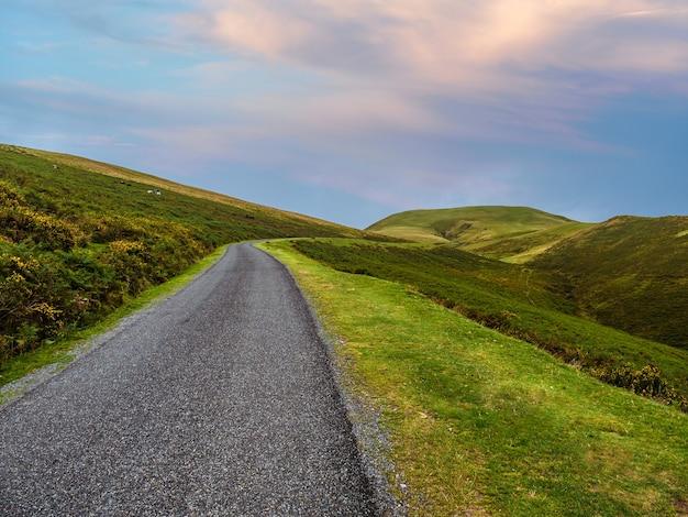 Les chevaux paissent au bord d'une route de montagne solitaire qui grimpe entre des pâturages verdoyants