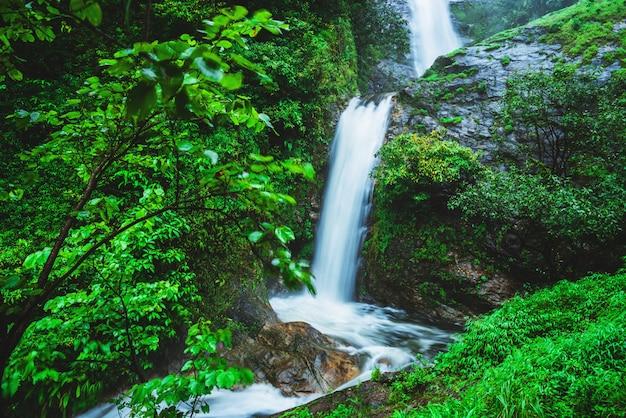 Chiangmai mae-pan cascade dans la forêt de la saison des pluies à doi intanon