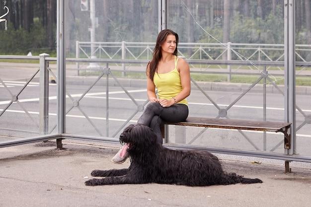 Chien briard avec une belle propriétaire attendent le bus sur la station de transport public pendant la journée.