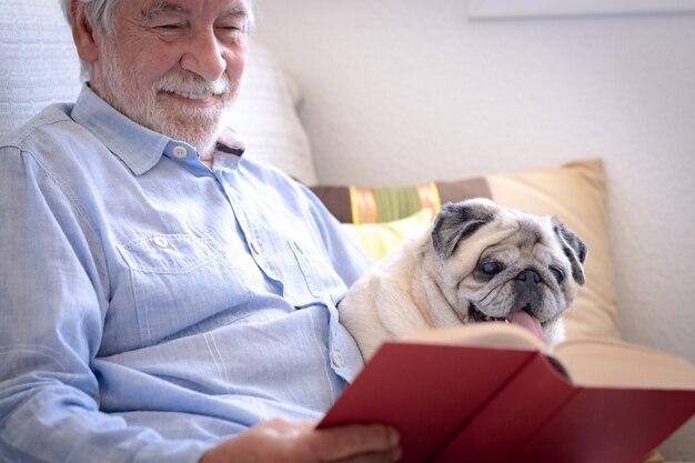 Chien carlin clair de race regardant un livre avec son propriétaire principal, ensemble sur un canapé à la maison