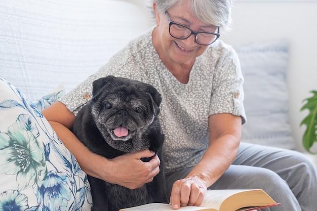 Chien carlin noir de race regardant un livre avec son propriétaire principal, ensemble sur un canapé à la maison