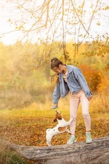 Un chien de couleur blanche et rouge se promène dans le parc d'automne avec le propriétaire
