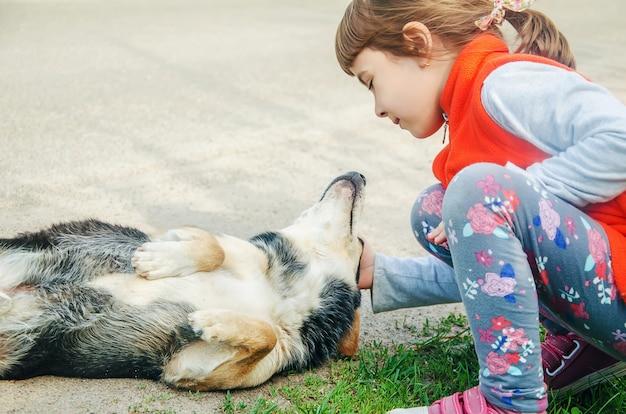 Le chien est l'ami de l'homme