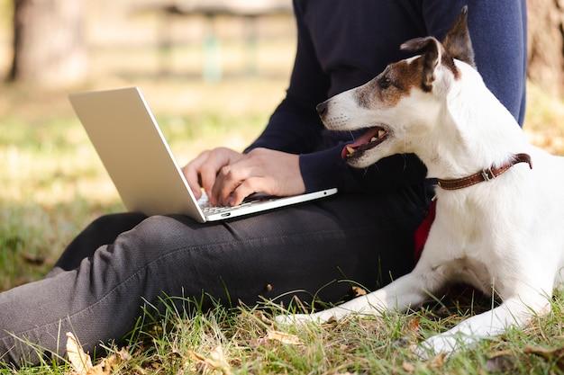 Chien avec propriétaire et ordinateur portable