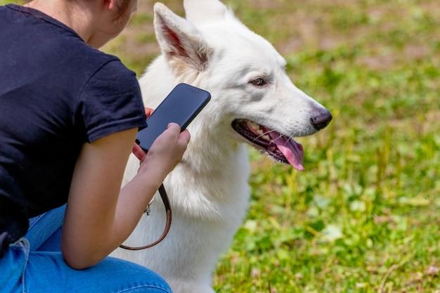 Chien de race berger blanc suisse près de sa maîtresse lors d'une promenade dans le parc. fille avec un téléphone près de son chien