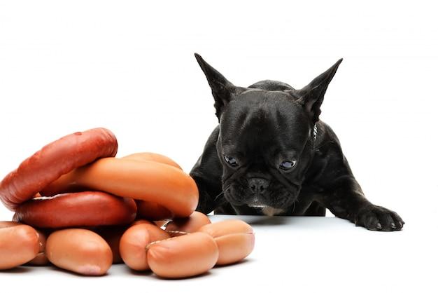Le chien regarde un tas de saucisses. bouledogue français et saucisses. portrait drôle d'un bouledogue noir.