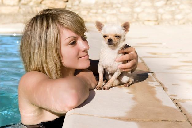 Chihuahua et femme dans la piscine
