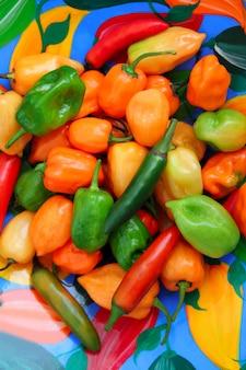 Chili habanero serrano piments mexicains chauds