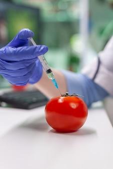 Chimiste scientifique injectant de la tomate avec des pesticides à l'aide d'une seringue médicale pour une expérience de microbiologie génétique. biochimiste travaillant dans un laboratoire agricole testant des aliments sains pour une expertise médicale.