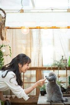 Un chiot et une dame jouent sur un lit de salon ensoleillé