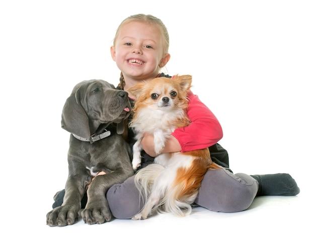 Chiot dogue allemand et enfant