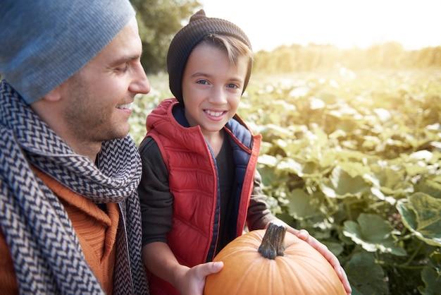 Choisir La Citrouille Parfaite Pour Halloween Photo gratuit