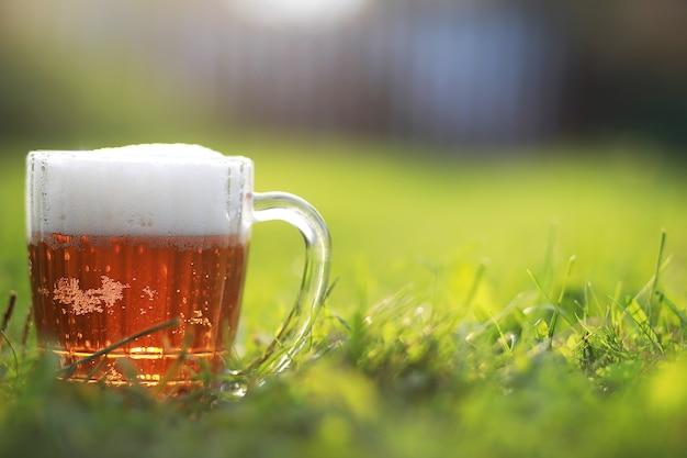 Chope de bière sur l'herbe