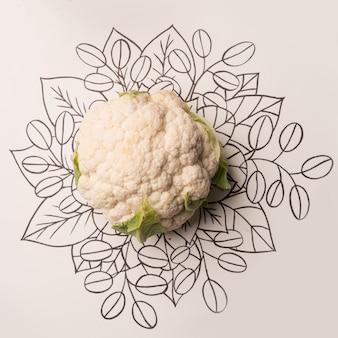 Chou-fleur sur fond floral contour