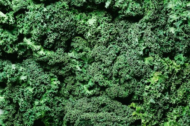 Chou vert organique frais, mise au point sélective, vue de dessus, espace copie. texture verte