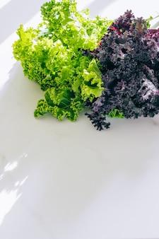 Chou vert et violet frais sur marbre, espace de copie