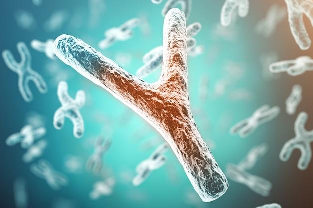 Chromosome xy, rouge au centre, concept d'infection, de mutation, de maladie, avec effet de focalisation.