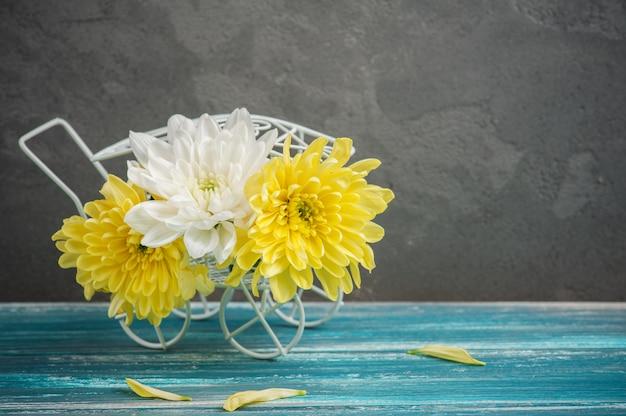 Chrysanthème blanc et jaune dans un pot