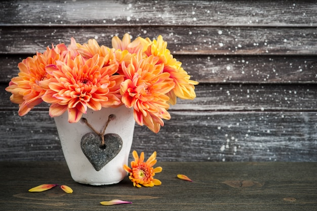 Chrysanthème orange en pot de béton