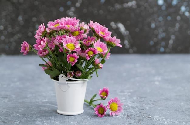 Chrysanthèmes roses sur fond gris, gros plan.