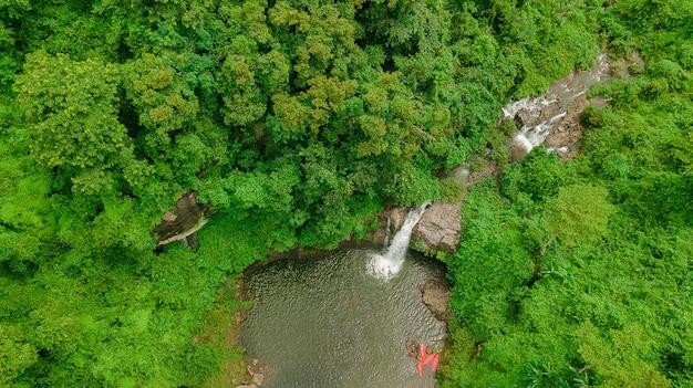 Chute d'eau au milieu de la forêt.
