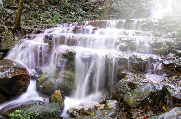 Chute d'eau dans une forêt tropicale profonde (chute d'eau mae kampong dans la province de chiang mai, thaïlande)