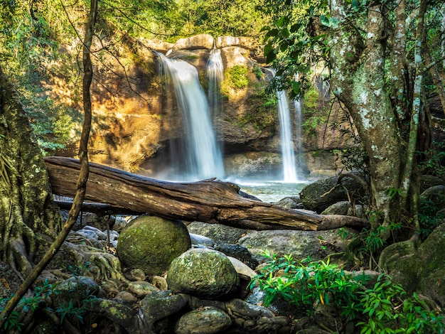 Chute d'eau de haew suwat parc national de khao yai, nakhon ratchasima, thaïlande