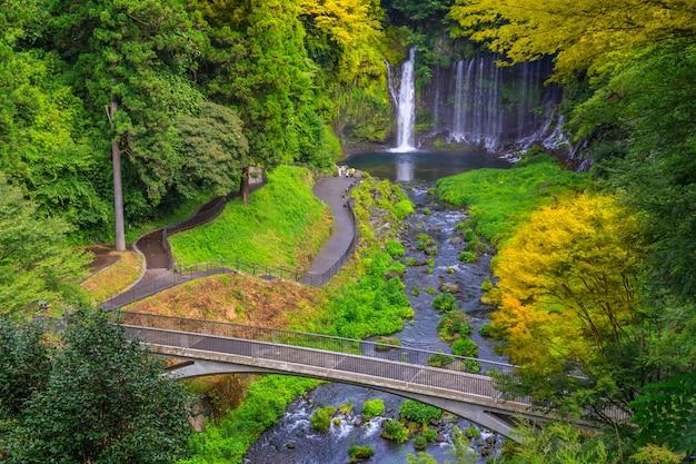Chute d'eau de shiraito dans les contreforts sud-ouest du mont fuji, shizuoka, japon