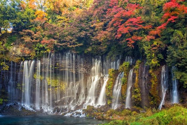 Chute d'eau de shiraito