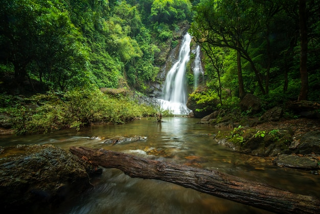 Chute d'eau de tamnung à phuket en thaïlande
