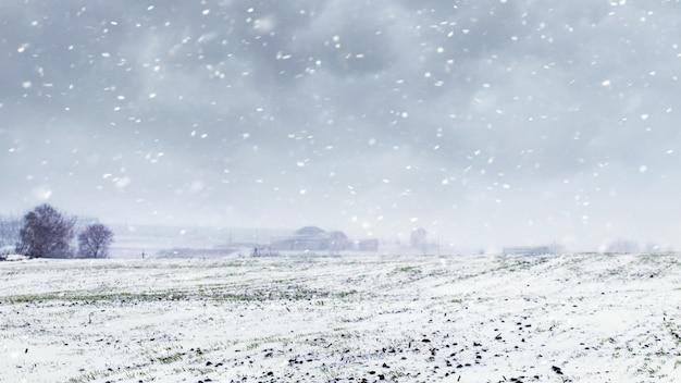 Chutes de neige sur le terrain. champ avec ciel nuageux pendant un blizzard
