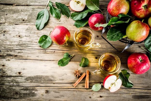 Cidre de pomme fait maison avec des épices de cannelle et d'anis, avec des pommes fraîches