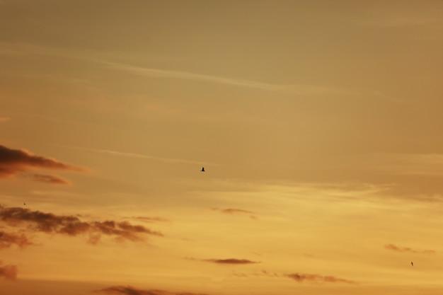 Ciel avant le coucher du soleil