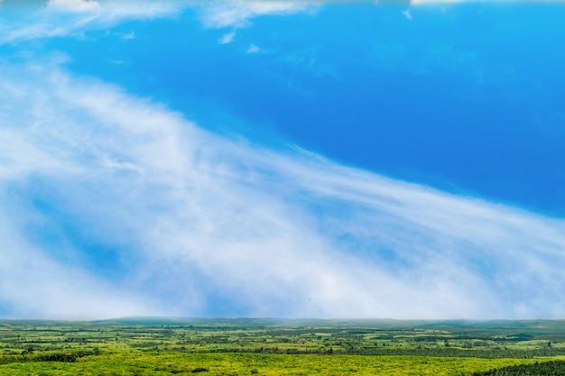Ciel bleu et beau nuage avec terre d'arbre.