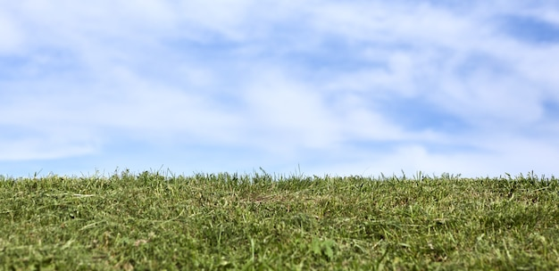 Ciel bleu blanc avec des nuages et de l'herbe verte fraîche sur la bannière de fond.