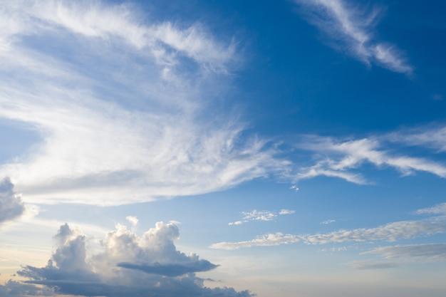 Ciel bleu et nuage avec arbre de prairie.