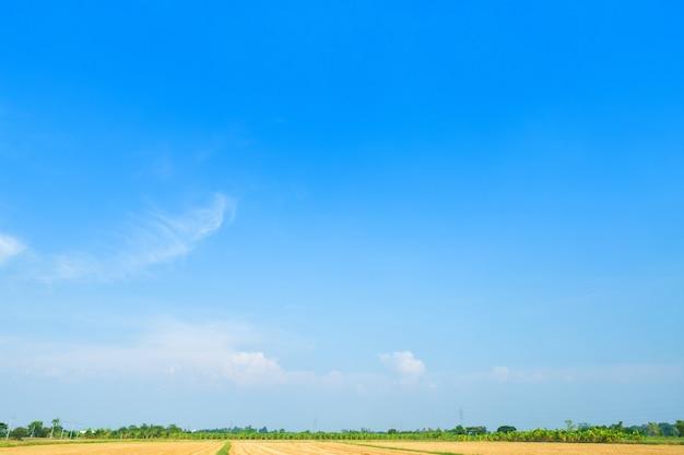 Ciel bleu avec nuage blanc
