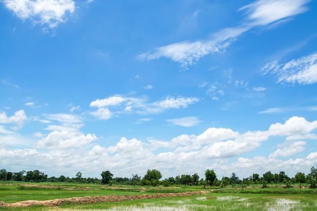 Ciel bleu avec des nuages blancs et des terres agricoles